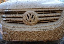 Schlammfahrt im VW